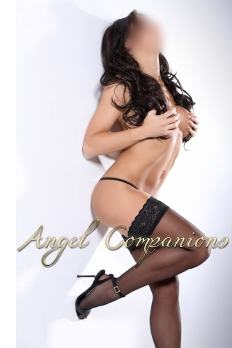 Megan Angel Companions escort